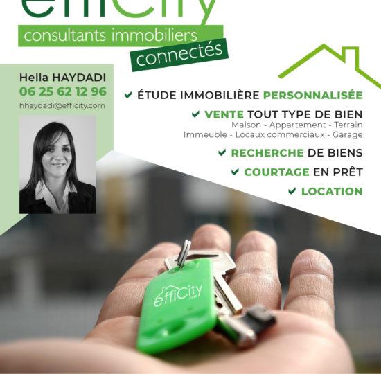 Flyer Efficity-1
